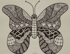 Butterfly by Spaci