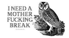 Weird Birds, Funny Birds, Server Humor, Bird Quotes, Bird Artwork, Friday Humor, Quotes And Notes, Funny Jokes, Humor