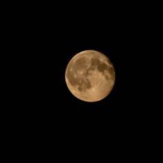 https://flic.kr/p/wxDuC9 | A moon attempt | Olympus digital camera