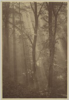 The Dayspring from on High / 1890s–1900s / Alexander Keighley / Carbon print
