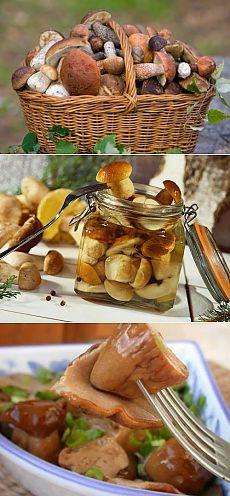 Маринованные грибы: 5 лучших рецептов / Простые рецепты