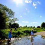 Wildswimming Surrey
