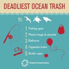 Deadliest ocean trash #Infographic