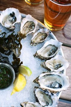 "thesorrowsofgin: "" nicolecfranzen: "" Hog Island Oysters by Rick Poon "" The Sorrows of Gin. """