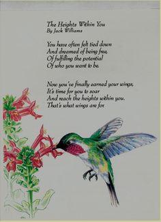 Attract Butterflies and Hummingbirds to your Garden.