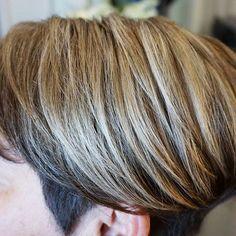 blonde hair ideas  short haircut inspo  gray coverage ideas