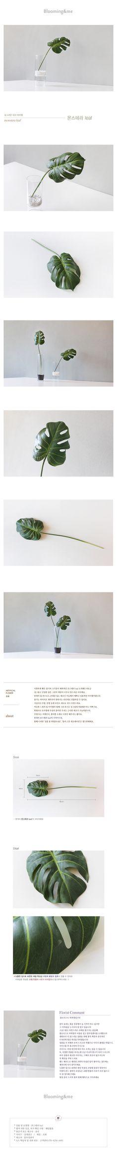 텐바이텐 10X10 : 몬스테라 leaf