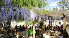 London's Best Beer Garden - The Albion in Islington. London Pubs, London Places, London Restaurants, London Food, London Manchester, North London, East London, Best Pubs, Garden Bar