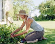 7 Reasons To Take On A Hobby For Stress Relief: Gardening is one of the best hobbies for stress relief--it gets you outside, in nature, and away from problems.