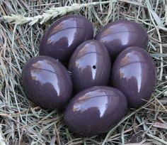 Tinamou eggs are amazing. They have a natural sheen that makes them look like they are made of plastic or glass. Colors vary a bit. Rare.From birds Raised in captivity/ domesticated. Beautiful eggs for basket, bell jar, or displayed singly on a stand. www.brackenridgeranch.com