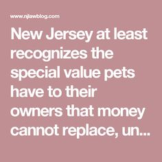 New Jersey at least recognizes the special value pets have to their owners that money cannot replace, unlike a coffee table, car, or home.