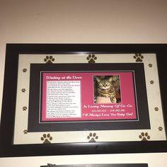 Beautiful Black and White Cat Memorial Pet Loss Bereavement Rainbow Bridge Fridge Magnet plaque gift Pet Quotes Dog, Pet Grief, Patterdale Terrier, Pet Sympathy Cards, Bereavement Gift, Dogs Golden Retriever, Retriever Dog, Cat Memorial, The Doors