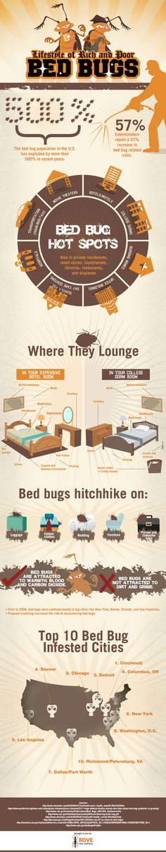 Who knew that bed bugs hung our in Movie Theaters?  Lifestyle of Rich and Poor Bed Bugs