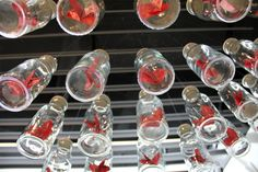 escaparate+san+valentin+botellas.jpg 850×567 pixel