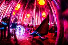 Tim McGuire - Electric Forest Music Festival, Rothbury, MI
