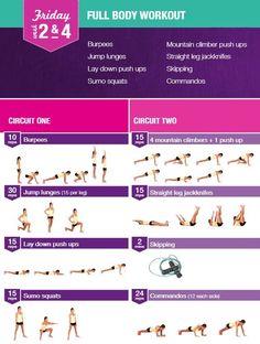 Nutrition Plan + Lifestyle Kit!
