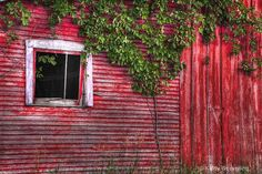 Photography News: Photo of the Day #2912 - The Window by Kathy Wesserling - 9/5/2012 4:05:00 AM