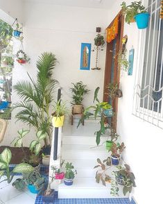 Do share ur plant/ plants /flowers as well as any green beauties you see around u tagging ur own desi hashtag for plant lovers #mygreentreasure. For those looking for some fun we have weekly plant related contests.  Theme this week at #mygreentreasure is planters show us how u display your plants in planters. Awesome gifts sponsored by pabitha @kritihandmade to be won by the monthly winners.  Remember to follow the hosts @mygreentreasure @kajal8212 @gopalgaya .guest hosts of the week and guest s Porch Garden, Balcony Garden, Apartment Balcony Decorating, Room Decor, Wall Decor, Creative Decor, Vintage Home Decor, Some Fun, Container Gardening