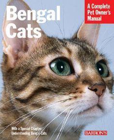 Bengal Cats by Dan Rice; Michele Earle-Bridges (Paperback - Revised Ed.): Booksamillion.com: Books
