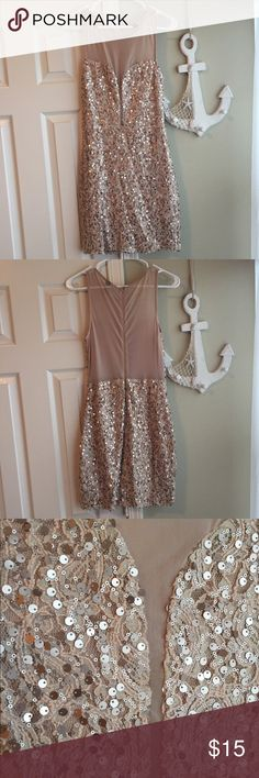 Windsor Rose Gold Sheer Dress This dress is BEAUTIFUL. The cut is so flattering! It is lined and very comfortable to wear! Gently used. The color and sparkles made my skin glow when I wore it! WINDSOR Dresses Mini
