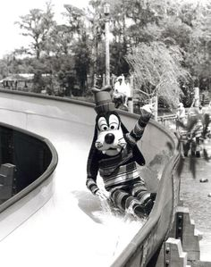 magic-disney:  May I ask what Goofy is doing in a waterslide?