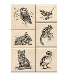 Inkadinkado Wildlife Friends Mounted Stamp Set