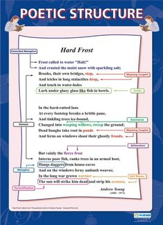 From our English poster range, the Poetic Structure Poster is a great educational resource that helps improve understanding and reinforce learning. English Literature Poems, British Literature, Language And Literature, Teaching Poetry, Writing Poetry, Poetry Books, Teaching Tips, Teaching Reading, English Writing Skills
