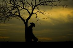 """Cowboy Silhouette 