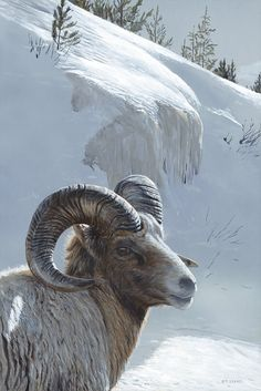 Jackson Hole Art Auction:  Winter Sentinel