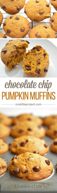 This recipe for pumpkin chocolate chip muffins is AMAZING! It's the perfect combination of pumpkin pie spice and moist, delicious, goodness!