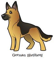 Cartoon German Shepherd / Alsatian