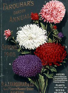 Farquar's Garden Annual  Boston, MA  Spring 1905