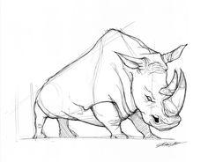 , Animal Sketches, Animal Drawings, Drawing Sketches, Art Drawings, Rhino Tattoo, Rhino Logo, Crayons Pastel, Rhino Art, Desenho Tattoo