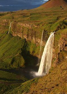 Favorite Gifs - •••► Nature - Community - Google+