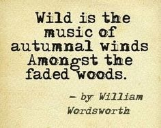 Wild is the music of autumnal winds amongst the faded woods. William Wordsworth