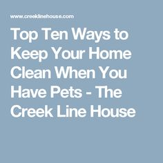 Top Ten Ways to Keep Your Home Clean When You Have Pets - The Creek Line House
