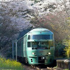 "Japanease Sightseeing train ""Yufuin No Mori""... Beautiful!!"