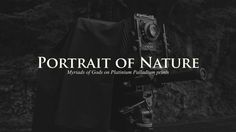 Japanese Photographer capturing Nature on large format photos.