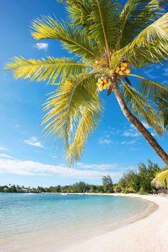 #Pereybere #Beach #MervilleHotel #Mauritius