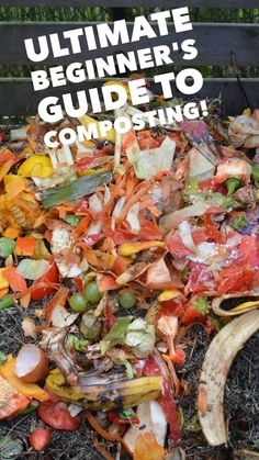 Learn how to compost with this ultimate composting 101 guide for beginners. If you are ready to start composting, learn how you can set up a compost pile or compost bin in your yard and get going! Already composting? Leave a comment with your method for o Garden Compost, Garden Soil, Diy Compost Bin, Box Garden, Garden Beds, Garden Spaces, Greenhouse Cost, Greenhouse Ideas, Portable Greenhouse