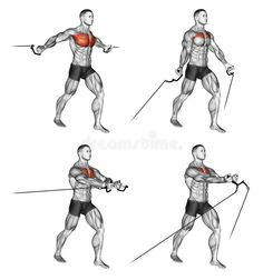 Photo about Middle and Low cable fly. Exercising for bodybuilding Target muscles are marked in red. Initial and final steps. Illustration of muscles, blocks, over - 66935758