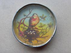 Dexterity puzzle - Bird nest eggs - DRGM 161036