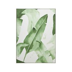 Allowing the white background to define the distinctive notched shape of banana leaves, artist Jessica Rowe blends and bleeds washes in rich green to add form and volume. Abstract with an Art Deco vibe, the original watercolor painting is brilliantly reproduced as a giclée print on canvas. A slim white wood frame adds definition.