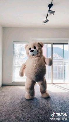 Teedy Bear, Bear Gif, Good Vibe Songs, Cute Songs, Funny Bears, Cute Bears, Teddy Bear Quotes, Bear Songs, Teddy Day