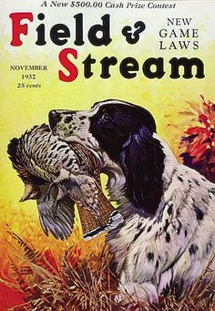 i love alllll these old field and stream covers