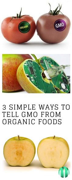 #GMO #GMOFree Do you prefer GMO food or not? Tell us your opinion ...