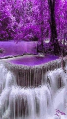 Alex Shaw, Power Feng Shui Expert shares Waterfall of Purple Wealth & Empowerment Beautiful Nature Wallpaper, Beautiful Gif, Beautiful Landscapes, Beautiful World, Beautiful Pictures, Simply Beautiful, Beautiful Scenery, Gif Bonito, Beautiful Waterfalls