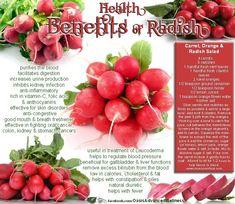 Health Benefits of RADISH                              + CARROT ORANGE & RADISH SALAD