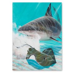 The Bull's Eye canvas giclee features a frantic stingray and powerful Bull Shark with ocean background . Sea Turtle Art, Ocean Backgrounds, Shark Art, Saltwater Fishing, Fish Art, Outdoor Art, Wildlife Art, Ocean Life, Nature Scenes