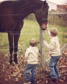 Photography---this is super cute...I love to watch kids apporch horses for the first time :D